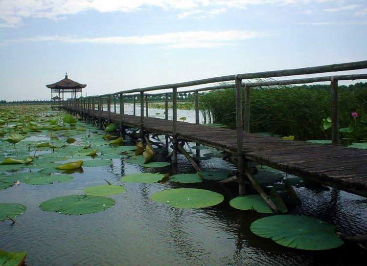 Changde Xidongting Wetland