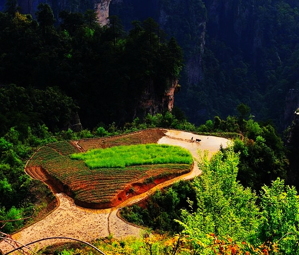 6 Days tour to Yichang-Zhangjiajie-Fenghuang-Sanjiang-Longshen-Guilin