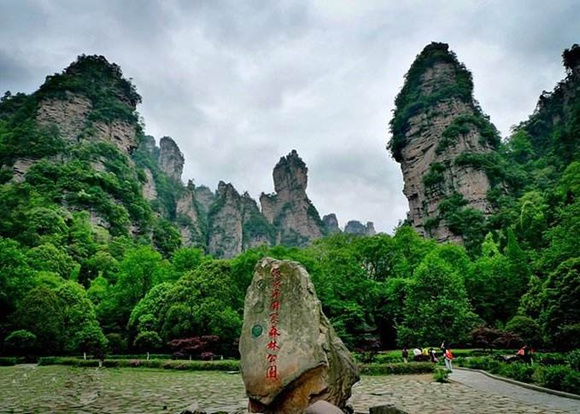 Forest oxygen bar tour in Zhangjiajie National Forest Park